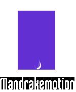 Mandrakemotion | design  motion  visual
