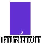 motion graphics | animation | design